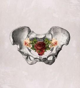 pelvic bowl 9